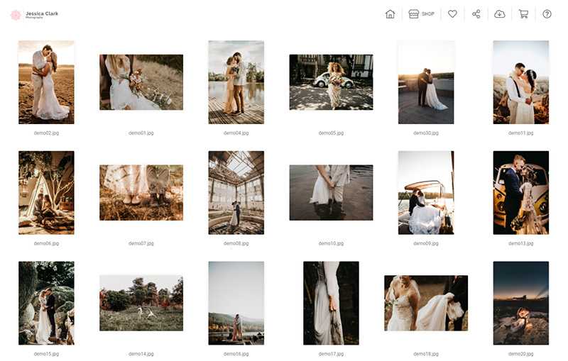 Photo proofing client gallery